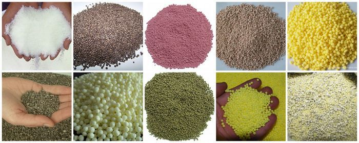 fertilizer granules