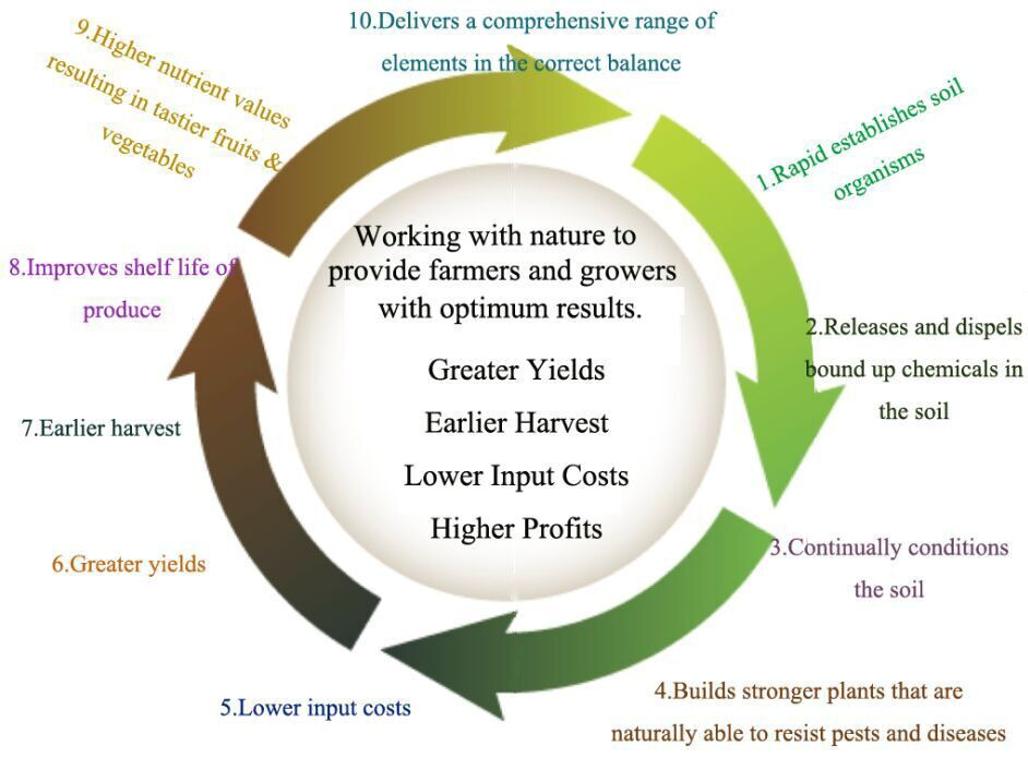 effect of organic fertilizer to crops and vegetables