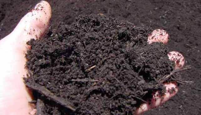 Compost Production
