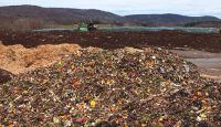 Food waste fertilizer