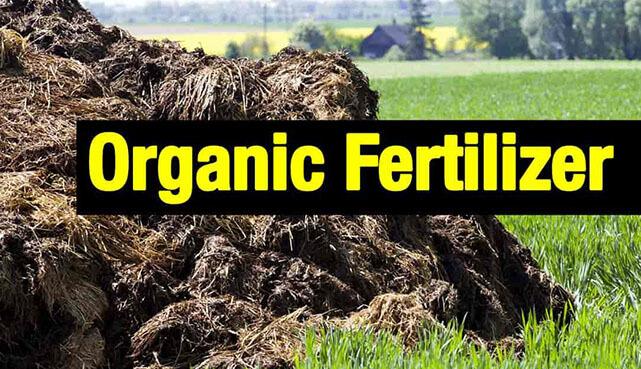 Grinding Equipment Fertilizer : Most detailed description of organic fertilizer